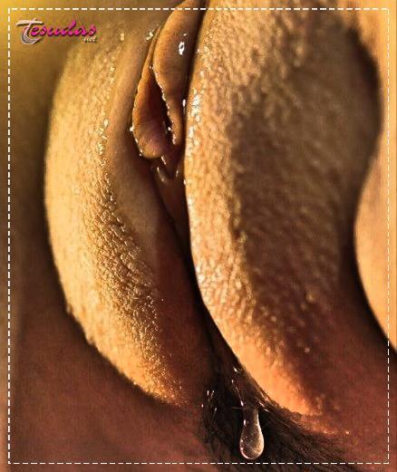 fotos de bucetas gostosas brasileiras 6 - Fotos de Bucetas Gostosas Brasileiras